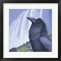 Framed Raven Water