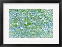 Framed Field of Blue Flowers