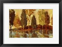 Framed Trees On The Lake