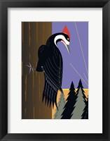 Framed Piliated Woodpecker