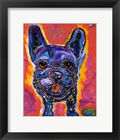 Framed MAD Frenchie