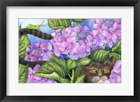 Framed Cat in the Hydrangeas