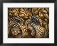 Framed Wrinkles