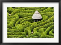 Framed Green Maze
