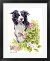 Framed Border Collie With Flowers Butterflies