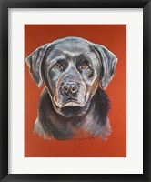 Framed Maggie Black Lab Dog