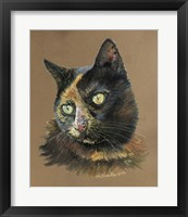Framed Normy The Cat