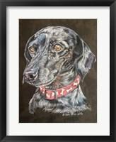Framed Pixie Dachshund Dog