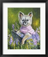 Framed Poppy The Pomeranian