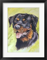 Framed Rotty Dog 1