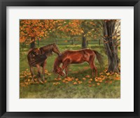 Framed Autumn Pastures Horses