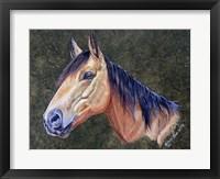 Framed Bam Bam Horse