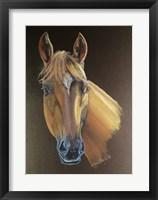 Framed Cowboy Horse