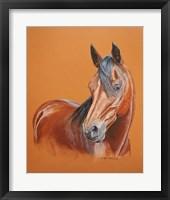 Framed Gambler Horse