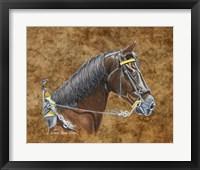 Framed General Lee Horse