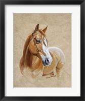 Framed Ruger Horse