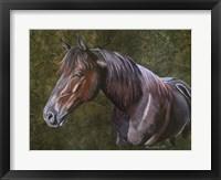Framed Tee Horse