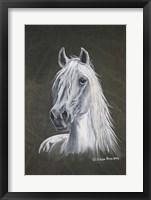 Framed White Stallion