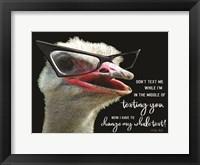 Framed Ostrich Don't Text Me