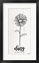 Framed Daisy - the Flower of True Love