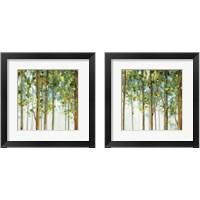 Framed Forest Study 2 Piece Framed Art Print Set