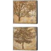 Framed Landscape 2 Piece Canvas Print Set