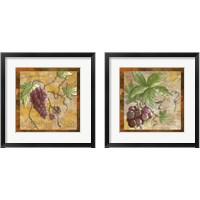 Framed Grapes for Wine 2 Piece Framed Art Print Set