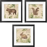 Framed Woodland Trail 3 Piece Framed Art Print Set