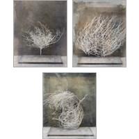 Framed Desert Form 3 Piece Art Print Set
