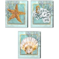 Framed Coral and Seahorse 3 Piece Canvas Print Set