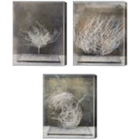 Framed Desert Form 3 Piece Canvas Print Set