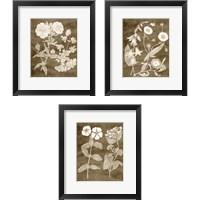 Framed Botanical in Taupe 3 Piece Framed Art Print Set