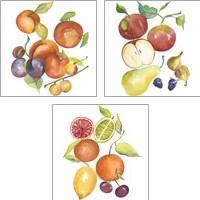 Framed Harvest Medley 3 Piece Art Print Set