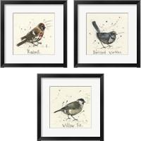 Framed Bird Drawing 3 Piece Framed Art Print Set