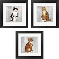 Framed Country Kitty on Wood 3 Piece Framed Art Print Set
