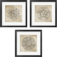Framed Rosette Neutral 3 Piece Framed Art Print Set