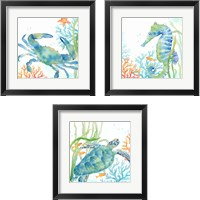 Framed Sea Life Serenade 3 Piece Framed Art Print Set