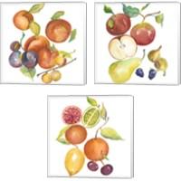 Framed Harvest Medley 3 Piece Canvas Print Set