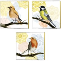 Framed Mandala Bird 3 Piece Canvas Print Set