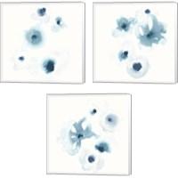 Framed Protea Blue 3 Piece Canvas Print Set
