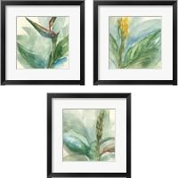 Framed Exotic Flower 3 Piece Framed Art Print Set