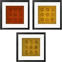 Framed All Lined Up Fruits 3 Piece Framed Art Print Set
