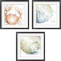 Framed Water Sea Life 3 Piece Framed Art Print Set