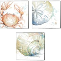 Framed Water Sea Life 3 Piece Canvas Print Set