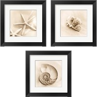 Framed Il Oceano 3 Piece Framed Art Print Set
