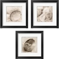 Framed La Mer 3 Piece Framed Art Print Set