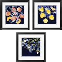 Framed Fresh Fruit 3 Piece Framed Art Print Set