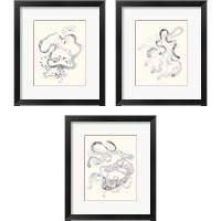Framed Cattywampus  3 Piece Framed Art Print Set
