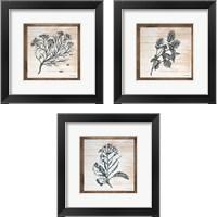 Framed Petals on Planks 3 Piece Framed Art Print Set