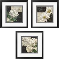 Framed Flowers on B&W 3 Piece Framed Art Print Set